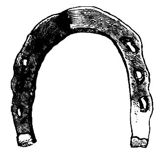 Horse_shoes_and_horse_shoeing_page221a