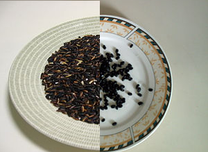 (L) by Ingio2  _CC_ 2.5(R)Black Beans. taken by Wilfredo Rodregues _CC_2.5
