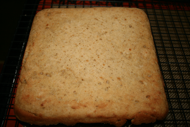 Baked-Bottom-Plus-Guar_tn