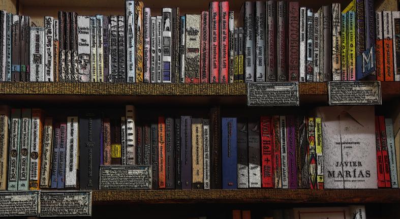 Books-Shelf-a2